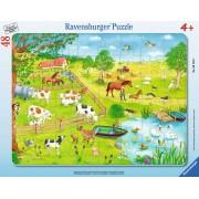 Puzzle Ravensburger - Zona Rurala, 48 piese (06145)