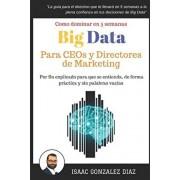 Big Data para CEOs y Directores de Marketing: Como dominar Big Data Analytics en 5 semanas para directivos, Paperback/Isaac Gonzalez Diaz