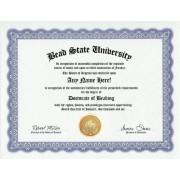 Beading Beads Degree: Custom Gag Diploma Doctorate Certificate (Funny Customized Joke Gift - Novelty Item)