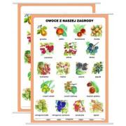 Owoce z naszej zagrody - plansza dydaktyczna
