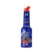 Mixer - Pulpa Fructe de Padure 100% Concentrat Piure Fructe 1l