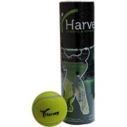 Premium Light Weight Cricket Tennis Balls Pack of 3