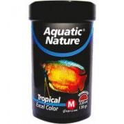 Tropical Excel Color M