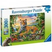 Пъзел Ravensburger 300 части XXL - Тигър на залез, 7012896