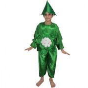 Kaku Fancy Dresses Cauliflower Vegetables Costume Cutout with Cap -Green-White 3-8 Years for Boys Girls
