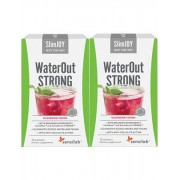 SlimJOY WaterOut STRONG 1+1 ZDARMA: nejrychlejší zeštíhlující účinek. Malinový nápoj. 2x 10 sáčků. Program na 20 dní.
