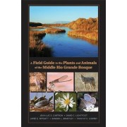 A Field Guide to the Plants and Animals of the Middle Rio Grande Bosque, Paperback