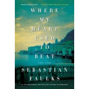 Where My Heart Used to Beat, Paperback