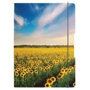 CAIET A5 MY.BOOK FLEX PATRATELE 40 FILE COPERTA SUNFLOWERS CU ELASTIC GALBEN HERLITZ (HZ9478440)