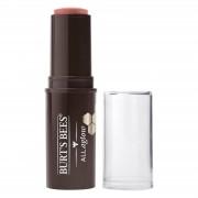 Burts Bees 100% Natural All Aglow Lip & Cheek Stick 8.5g (Various Shades) - Peach Pond