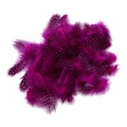 Magideal 50PCS Lots Dyeing Guinea Hen Feather Feathers 5-10cm Rose