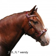 Fra F.R.A. Wendy B Cavesson, Bitless Bridle, Leather Reins w/ Clip