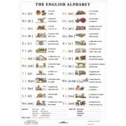 The English Alphabet - plansa de perete