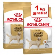 Royal Canin Breed 2 x 3 kg pienso para perros en oferta: 5 + 1 kg ¡gratis! - Golden Retriever Adult