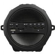 Wireless Portable Bluetooth Speaker With USB / FM / SD Card Reader / AUX IN (Black)