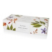 CUTIE CEAI TEA FORTE 10 PIRAMIDE PETITE RIBBON BOX COLECTIA HERBAL RETREAT