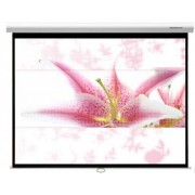 84in Manual Screen Wall/Ceiling Mounted, 4:3, 1720x1280
