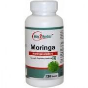 Way2herbal Moringa leaf / Shugru / Drumstick leaf (Moringa Oleifera) 500 mg 120 counts - Digestion Detox of Liver and Kidneys