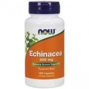 Ехинацея 400мг. - Echinacea - 100 капсули - NOW FOODS, NF4660
