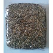 Grau ancestral pentru iarba de grau eco 500g