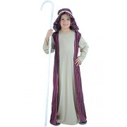 Wicked Costumes Boys Shepherd Medium 5-7 Years Costume for Christmas Nativity Panto Fancy Dress Kids Childs