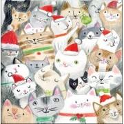 adventskalender met envelop - katten