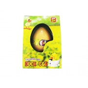 Art Box Magic Growing up Duck;s Duckling 1 Big Egg in a Gift Pack.( Duck Grow)