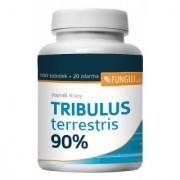 Tribulus Terrestris 90 % 100 tobolek + 20 zdarma
