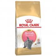 Royal Canin Kitten British Shorthair - 2 kg
