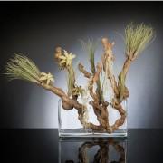 Aranjament floral EASTER GRASS, 60x50cm