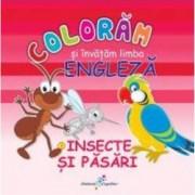Coloram si invatam limba engleza. Nr.3. Insecte si pasari