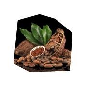 Degustace čokolády pro dva, , 2 osoby, 2 hodiny