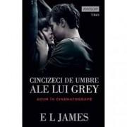 Cincizeci de umbre ale lui Grey Vol. I
