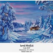 Iarna mirifica (kit goblen)