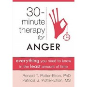 Thirty-Minute Therapy for Anger: Everything You Need to Know in the Least Amount of Time, Paperback/Ronald Potter-Efron