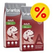 briantos Fai scorta! 2 x Briantos - Adult Salmone & Riso (2 x 14 kg)