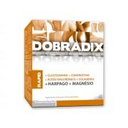Dobradix Rapid 40 Comprimidos