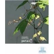 Petala - Alexandru Andries