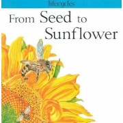 From Seed to Sunflower, Paperback