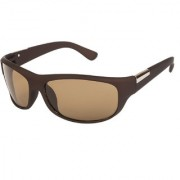 Arzonai Men's UV-400 Protected Sunglasses Hector Sports Wrap Matte Brown 64mm (Brown Lens) (MA-905-S4)