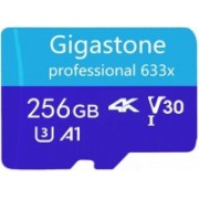 gigastone 256GB Blue 256 GB SD Card Class 10 90 MB/s Memory Card