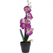 Orhidee artificială în ghiveci, roz, 38 cm
