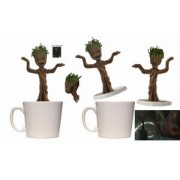 Cana Dancing Groot EE Special Edition