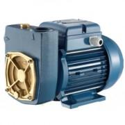 MD100-DIESEL Pentax Pompa de suprafata , putere 0.74 kW , inaltime de refulare 53-9 m , debit maxim 5-45 l/min