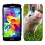 Husa Samsung Galaxy S5 Mini G800F Silicon Gel Tpu Model Little Pig