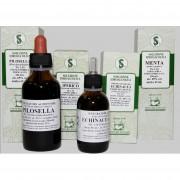 Artemisia 60ml gtt sarandrea