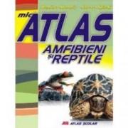 Mic atlas - Amfibieni si reptile - Aurora Mihail Dumitru Murariu