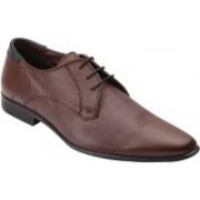 Harrytech London sherman Lace Up For Men(Brown)