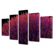 Tablou Canvas Premium Abstract Multicolor Buchet De Flori Decoratiuni Moderne pentru Casa 120 x 225 cm