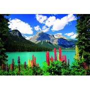 Educa Jigsaw Puzzle - Emerald Lake and Canadian Rockies - 1000 pieces